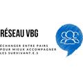 Project partner logo logo reseau vbg